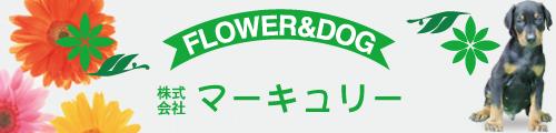 フラワー&ドッグ マーキュリー